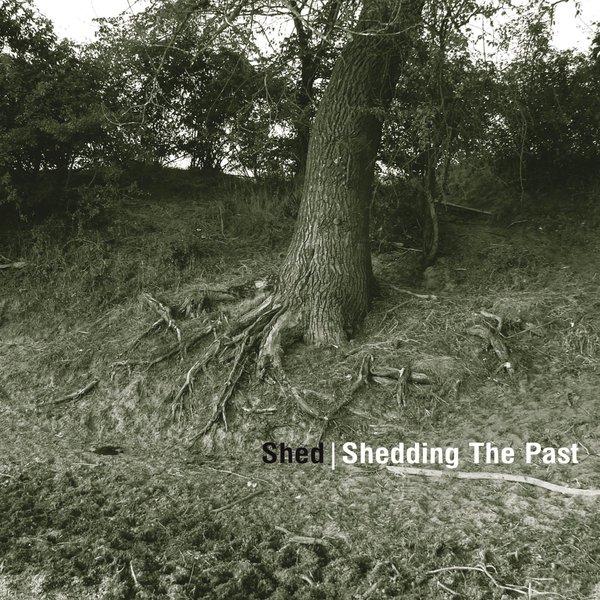 shedgross_1.jpg